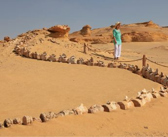 Wadi Al Hitan Valley of the Whales
